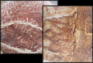 Before and after Co 22./ 1060c From the book Dry Glazes, J Jernegan. Lithium carb.70/ Borax 10/ Bentonite 15/ Cornwall stone 5.