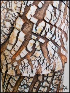 Ceramic bottle texture.